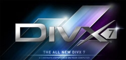 DivX and H.264 Video File Formats Explained